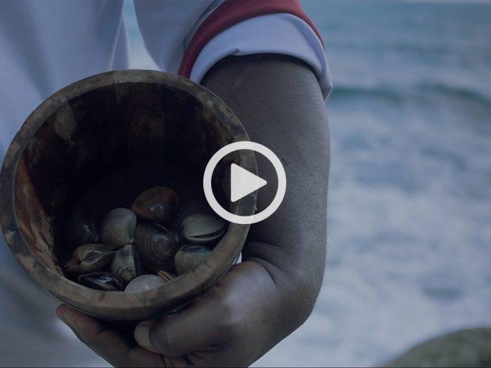 Video - A Journey Through Taste